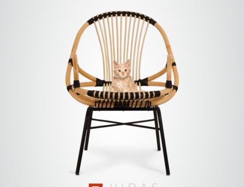7 vidas, 7 sillas 😸
