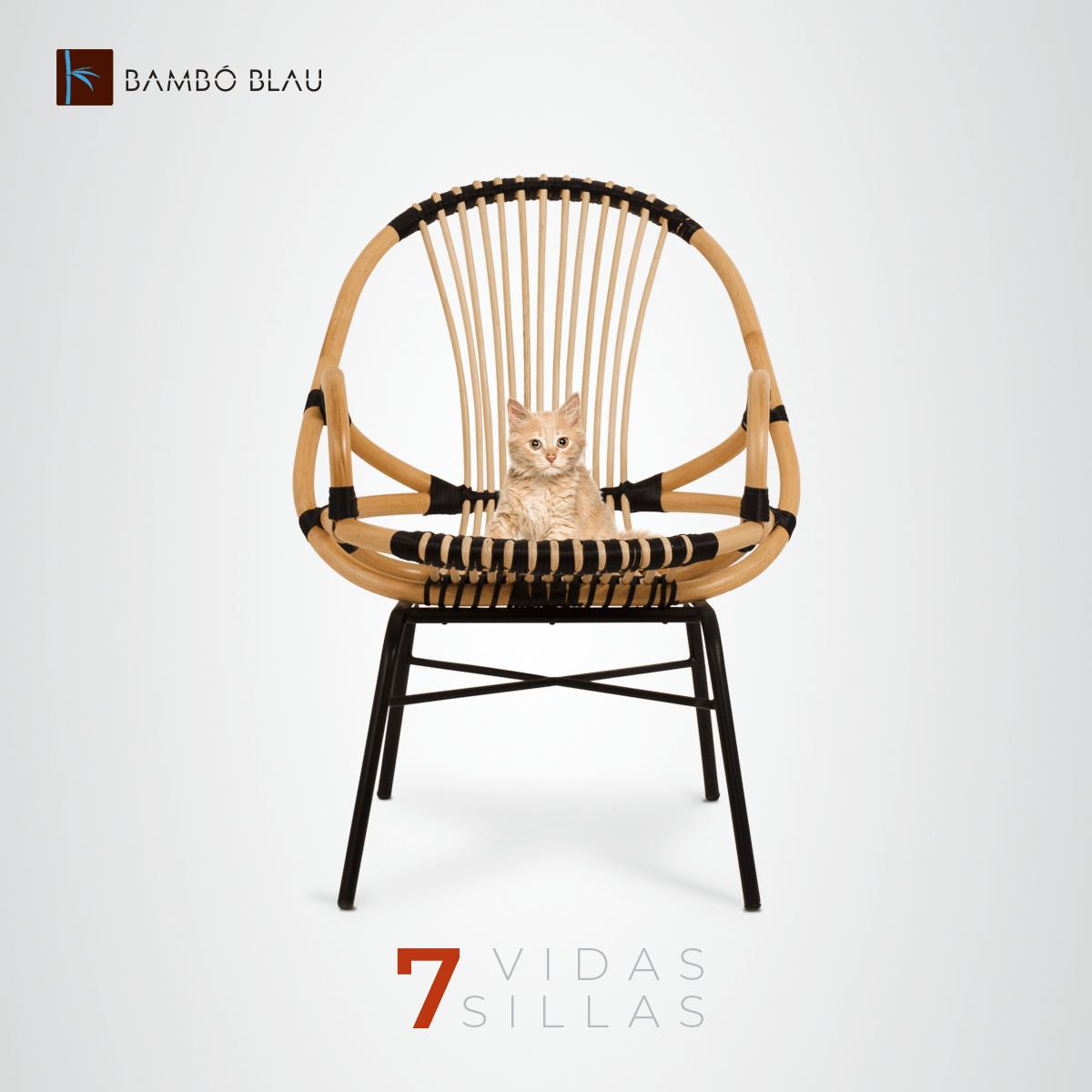 7 vidas, 7 sillas